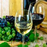 Weinprobe Naturhaus Nördlingen